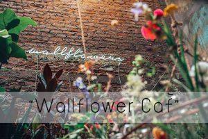 """Wallflower Café"" คาเฟ่สุดฮอต ติดกระแสย่านหัวลำโพง"